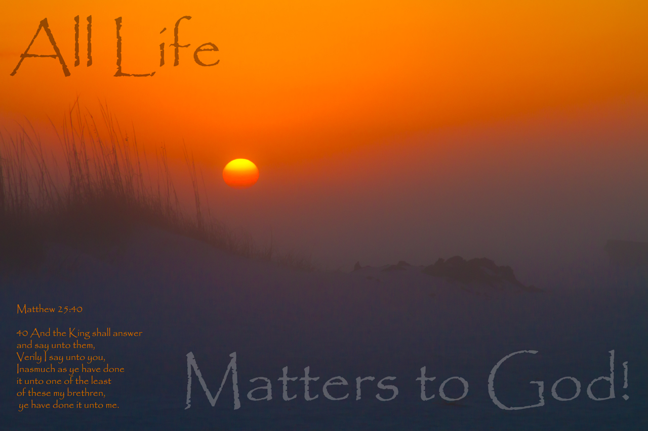 All Life Matters to God